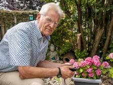 Harry Bakkers kijkt op zijn manier naar de natuur en heeft geen grote camera nodig