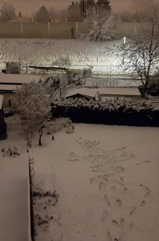 """Sneeuw trekt over het land: """"Het kan gevaarlijk glad worden met een sneeuwlaag van enkele centimeters"""""""