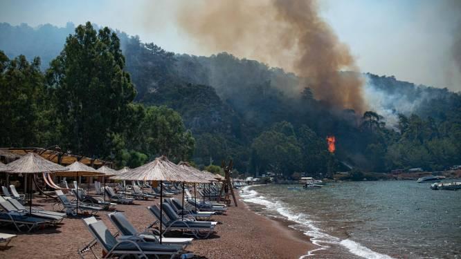 """Vlaamse helpt Turken na bosbranden: """"Mensen leven van landbouw, maar hun olijfgaarden, koeien en geiten zijn net als hun huis in vlammen opgegaan"""""""
