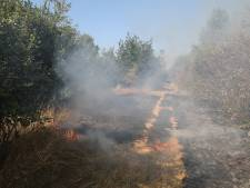 Weer brand in Loonse en Drunense Duinen, vuur snel gedoofd
