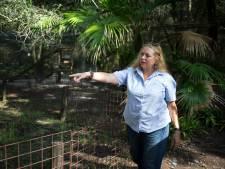 Carole Baskin bezorgd over loslopende tijger in Texas: 'Roekeloos en extreem gevaarlijk'