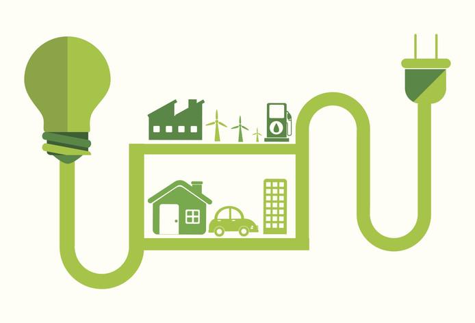 De Nederlandse regering heeft haar kaarten al jaren geleden gezet op biomassa als ideale 'overgangsbrandstof'.