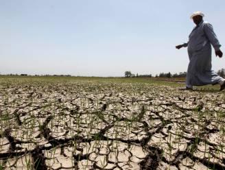 Egypte wacht harde strijd om steeds schaarser water