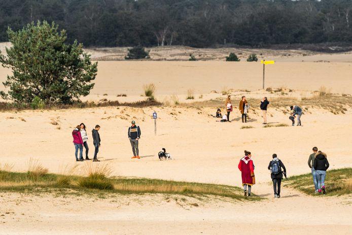 Dagjesmensen wandelen in natuurgebied de Loonse en Drunense Duinen.