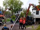 Vijftig jaar oude kastanje in centrum Domburg weg door storm