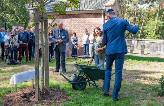 Burgemeester Janssen en Anne Kooijmans planten, gadegeslagen door Kees Welmers, de Anne Frank Boom op de Joodse begraafplaats in Oisterwijk.