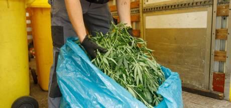 Hennepkwekerij met 300 wietplanten aangetroffen in flatwoning Amersfoort