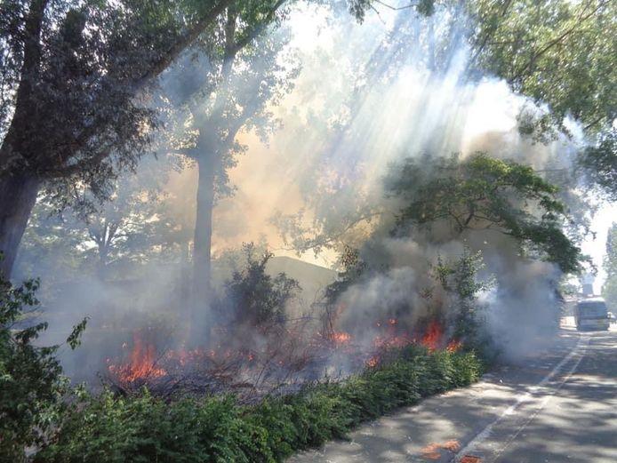 Het was al de vijfde keer dat de brandweer moest uitrukken naar de Driebeekstraat