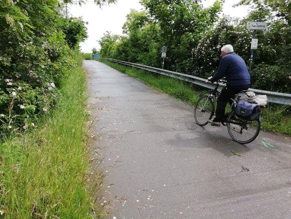 Langs het fietspad naar Schaffen woekert veel groen.