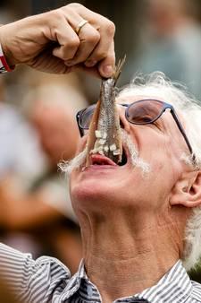 Scheveningen negeert vis uit eigen Noordzee