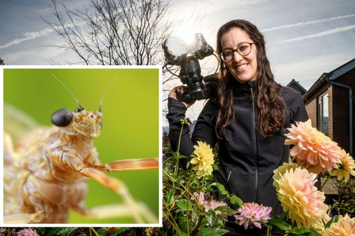 Redacteur en macrofotograaf Marit van Ekelenburg beschrijft elke vier weken de natuur die met het blote oog amper te zien is. Maar wie inzoomt, stuit soms op heel bijzondere karakters. Wat te denken van... de eendagsvlieg.