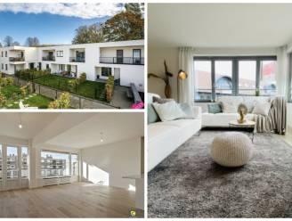 Wat krijg je voor een huis van 325.000 euro in hartje Antwerpen? Onze woonexpert zoekt uit hoeveel je betaalt per provincie
