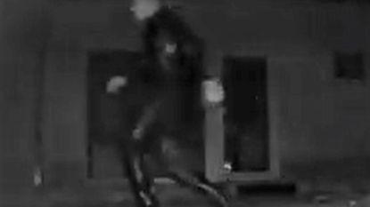 Video: En dan sluipt er plots een man op naaldhakken door je tuin