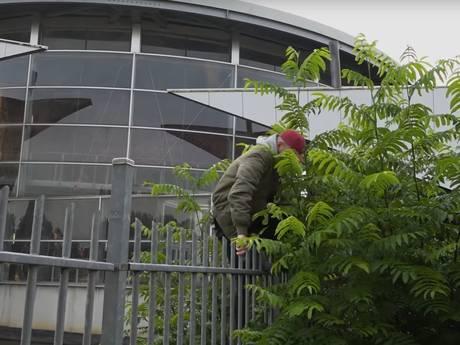 StukTV, met Giel uit Uden, zorgt voor opschudding bij Dinoland: 'Laat dit geen voorbeeld zijn'