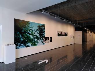 LUCA-studenten, alumni en docenten stellen werken samen tentoon in Cultuurcentrum Hasselt