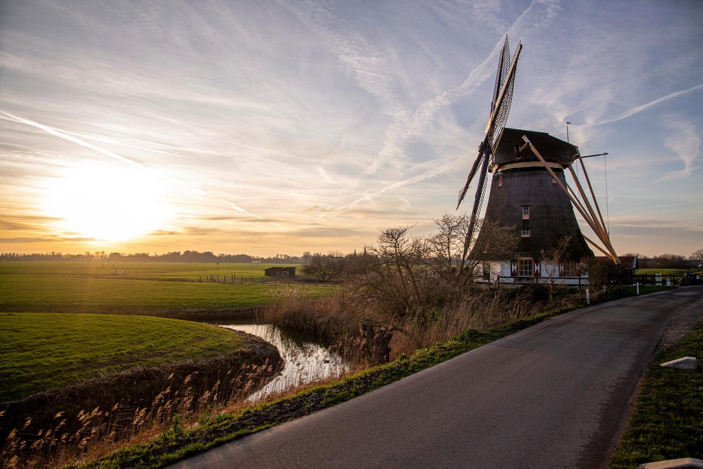 De Mondriaanmolen aan rivier de Gein kan gezelschap krijgen van enorme windmolens. Een petitie tegen dat plan is meer dan 1500 keer ondertekend.