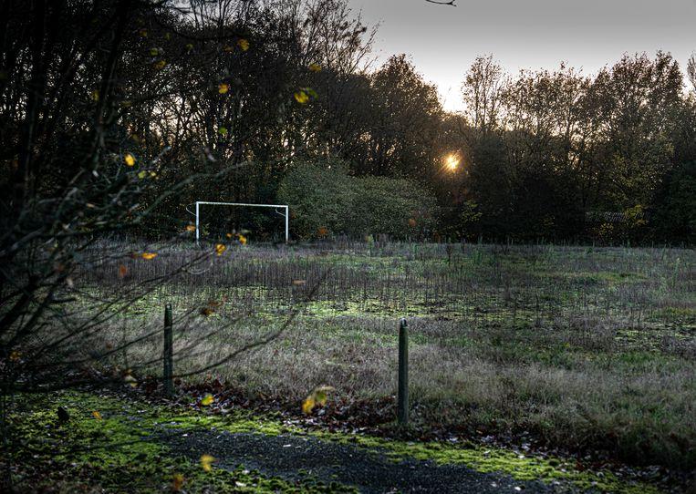 In het Gelderse dorpje Otterlo zijn de voormalige sportvelden van SV Otterlo overwoekerd. Er zou gebouwd worden, maar dat gaat in verband met de stikstofcrisis voorlopig niet door.  Beeld Koen Verheijden