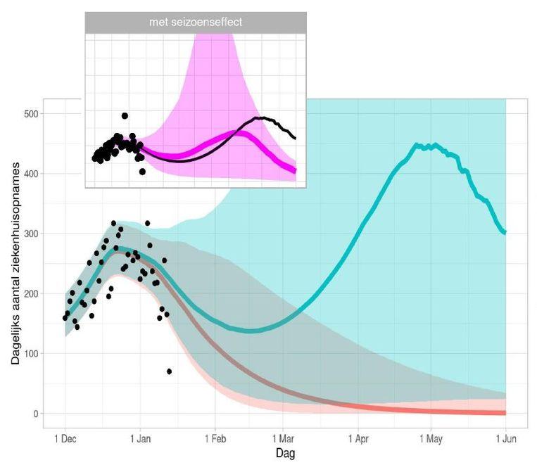 De RIVM-prognose van het aantal ziekenhuisopnames bij onveranderd beleid, zónder Britse virusvariant (rood) en mét de mutant (in blauw). In roze: hetzelfde grafiekje, maar nu met meegeteld een sterk dempend effect van het voorjaar. Beeld RIVM
