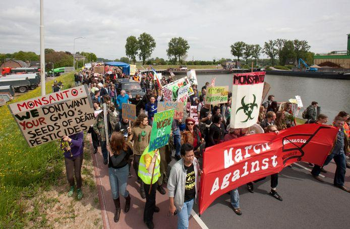 Demonstranten trokken in 2013  over de Grebbedijk in Wageningen naar het hoofdgebouw van Monsanto.Het protest gold genetische manipulatie, het doelbewust veranderen van erfelijke eigenschappen van organismen.