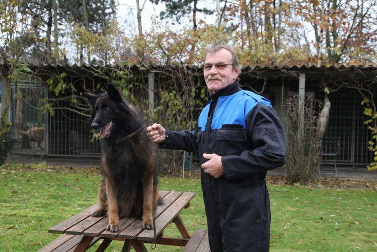 Hugo Gesquière neemt na bijna 50 jaar nog altijd deel aan wedstrijden met zijn Belgische herders.