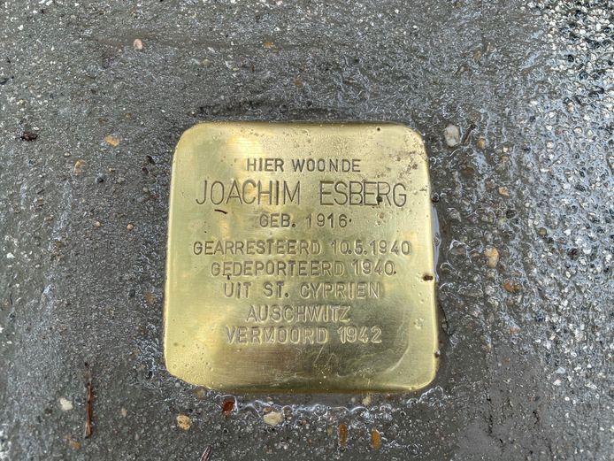 De informatie op de steen is vooraf grondig gecontroleerd door de archiefmedewerkers van de Stad Gent.