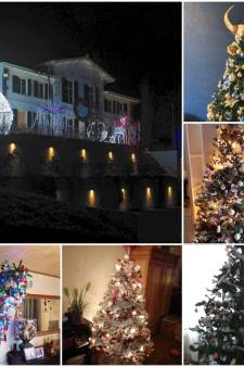 'Kerst verbindt en brengt geluk': daarom hebben zij de boom al staan. En jij?