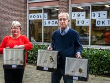 Speciaal licht voor 1082 vogels; Vogelvereniging Veldhoven houdt open kampioenschap