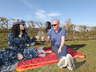IN BEELD. Van zorgeloze duik in het water tot gezellige picknick en apero: Limburgers genieten van eerste zonnestralen