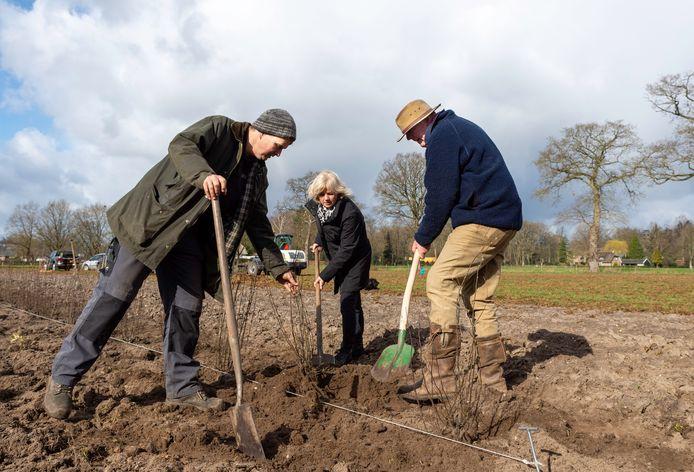 Jan de Weerd, Adrie Proper en Hens Hinloopen planten fruitbomen op Episch Centrum Epe.