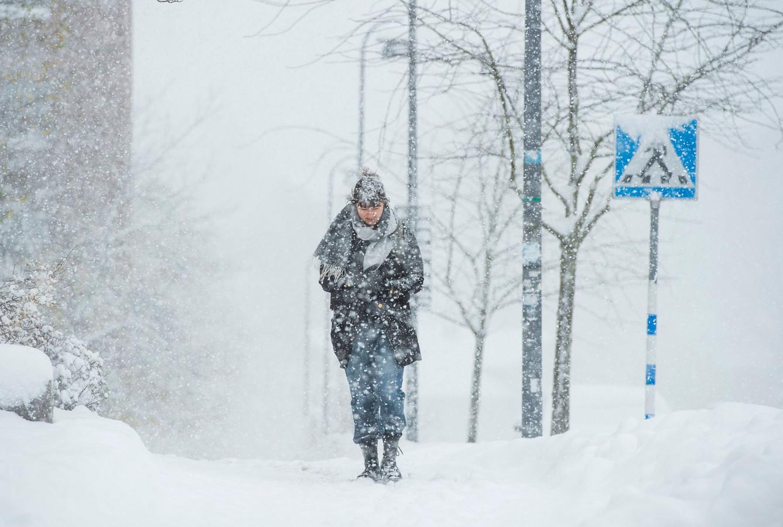 Een Zweedse vrouw ploetert door de sneeuw