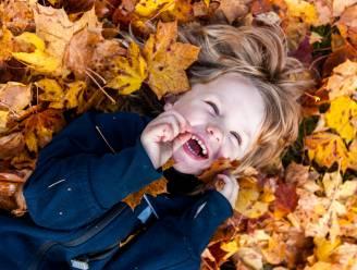 Aftellen naar de herfstvakantie: 6 onvergetelijke uitstappen voor jong en oud