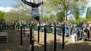 Street Workout 9800 demonstreert trucs