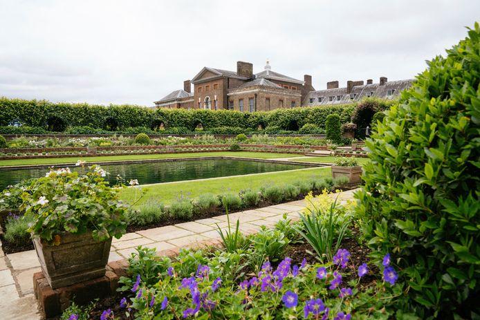 De Sunken Garden van Kensington Palace werd opnieuw aangelegd ter ere van Diana. Op deze foto zijn de vergeet-me-nietjes te zien.