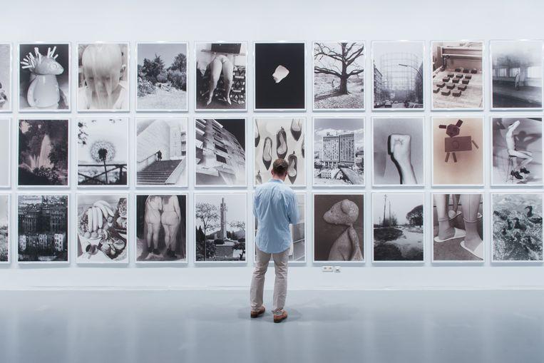 Een bezoeker bewondert een expo in het Fotomuseum.