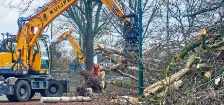 Bomen weg voor eerste gasloze wijk van Oss