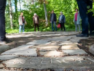 "Vrijbroekpark opent bosbadpad: ""Ideale manier om te vertragen"""