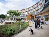 Haagse Beemden: leuke wijk, maar het wordt tijd om iets aan de slijtage te doen