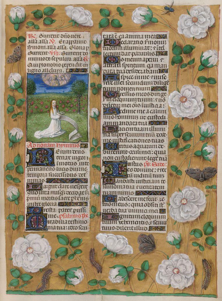 Illustratie van de Meester van het gebedenboek van Dresden. Vrouw knielt in de mystieke rozentuin. (1490-1497).  Beeld Imageselect