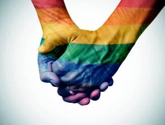 Na relaas van Gents koppel: Senaat pleit voor anonieme aangifte van homofoob geweld