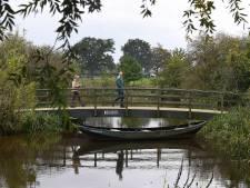 De beekrombout is terug in Vierlingsbeek en dat is goed nieuws voor de natuur