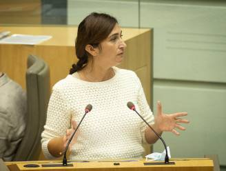 "Demir: ""Ook in ons land één kleine energieleverancier met betalingsproblemen"""