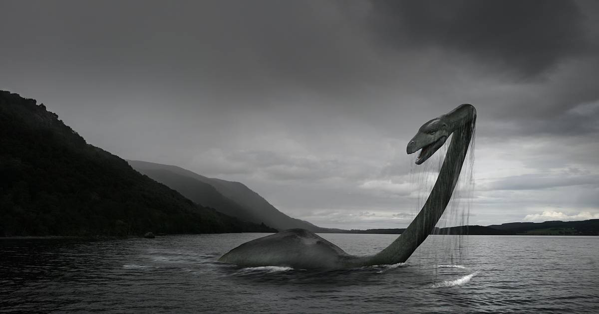 Mythe Loch Ness Ontrafeld Wetenschappers Geven Enige Plausibele Verklaring Wetenschap Ad Nl