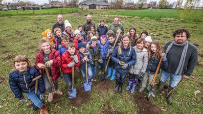 Leerlingen planten nieuw bos aan op Sint-Jan