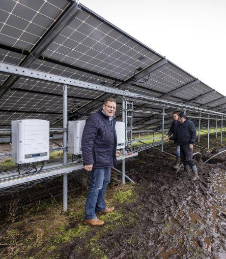 Kinderen tussen 8 en 18 jaar doen via spaarplan mee aan groter zonnepark in Wierden: 'Als zij enthousiast zijn, krijg je ouders vanzelf mee'
