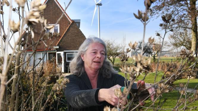 Windmolens bij woning Hanny gaan tóch 'volle bak' draaien: 'Wat heb ik aan geld als ik niet kan slapen van herrie?'