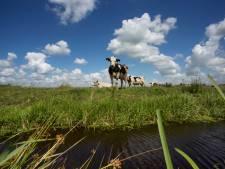 Zo wil Krimpenerwaard meer toeristen laten overnachten in de polder