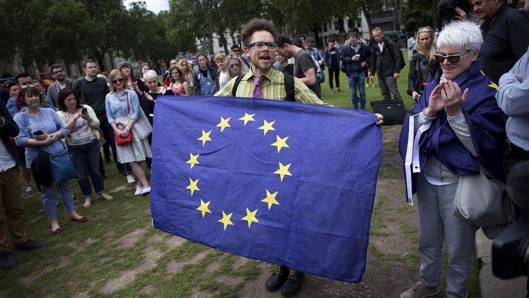 Een voorstander van de EU protesteert in Londen. Beeld epa