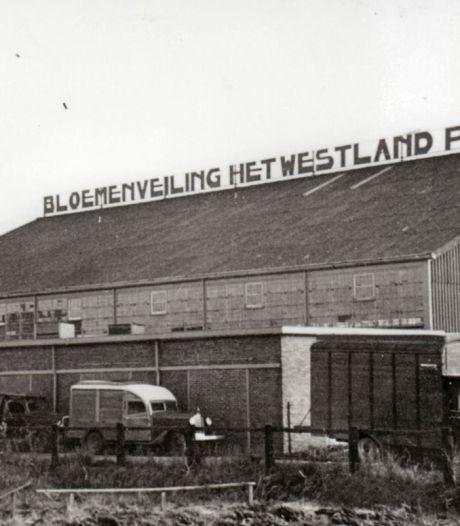 Na jaren bloemenhandel en sociaal-cultureel centrum toch weer een Veiling in Poeldijk