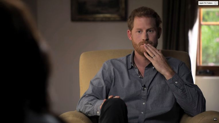 Prins Harry in 'The Me You Can't See'. Beeld Photo News