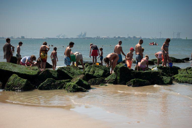 Strandgangers aan de kust van Knokke, met in de verte de haven van Zeebrugge. Op nog geen kilometer hiervandaan ligt de zogeheten Paardenmarkt, een munitiestortplaats met goed 35 miljoen kilogram aan oorlogstuig, die nu blijkt te lekken. Beeld Hollandse Hoogte / Clemens Rikken